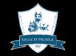 Club canin Veille & Protège à Chastre éducation...
