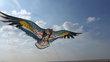 Anniverssaires créa avec des cerfs-volants,envols...
