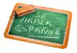 Cours d'espagnol professeur diplômé à LLN ou...