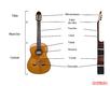 Cours de guitare classique débutants