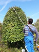 Travaux de Jardinage Professionnel 13 /heure