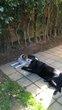 Cadre affectueux à Uccle prés du Parc de ...