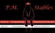 P.M.Stables - Cours dressage et obstacle