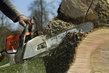 Entretien de jardins - Abattage d'arbres