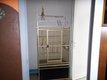 Cage pour perroquet martelée 180x80x70cm très bon...