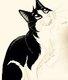 Jolis chatons à donner sous conditions, pic´et...