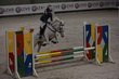 Poney d'obstacle