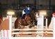 Super poney de concours M10 min