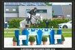 Plusieurs chevaux d'obstacle pour jeunes cavaliers