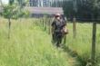 Nettoyage et entretien de Jardin , terrain .