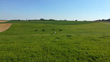 Prairie rixensart