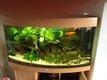 Aquarium avec sous-meuble Juwel Vision 180