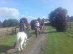 [cherche] aide pour chevaux/equitation pour de...