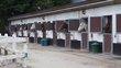 Boxes avec soins pour chevaux