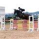 Cours d'equitation dressage/obstacle/au sol...