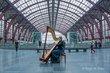 Live harpmuziek voor jouw event 🎼
