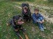 Chiots Rottweiler parents multichampions