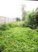 Remise en état de votre parc et jardin
