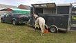 Transport chevaux toutes distances dépôt Hesbaye