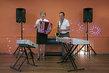 Duo accordéoniste et saxophoniste chanteur