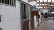 Boxes pour chevaux à Sart-Dames-Avelines