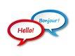 Doelgerichte lessen Frans - Engels / Master in de...