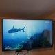 Tv led lg de 49 pouces (125cm)