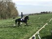 Professeur d'equitation obstacle/dressage