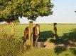 Prairie pour 2 chevaux molenbaix