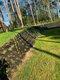 Aménagement et entretien de votre jardin