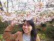 Cours de japonais pour adultes et enfants
