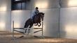 Cours particuliers, travail de chevaux et...
