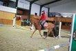 Cavalière pour prendre chevaux au travail,etc
