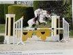 Super poney de concours