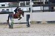 Magnifique poney NF 11ans, cherche nouveau...