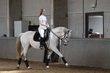[cherche] demie pension pour mon cheval portugais...