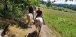 Balade à cheval au fil de la Semois
