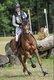 Super petit cheval