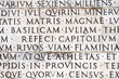 Bijles Latijn, ook aan huis
