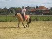Cours d'équitation à Sombreffe