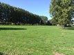 Prairie chevaux à louer (Beersel- Ruisbroek)