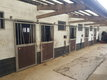 À louer 5 box chevaux (bâtiment complet)