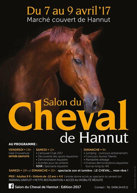 Salon du cheval de hannut li ge - Salon du cheval a mons ...