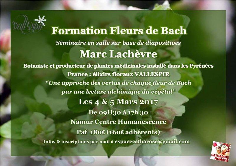 Formation Fleurs De Bach Avec Marc Lachevre Namur
