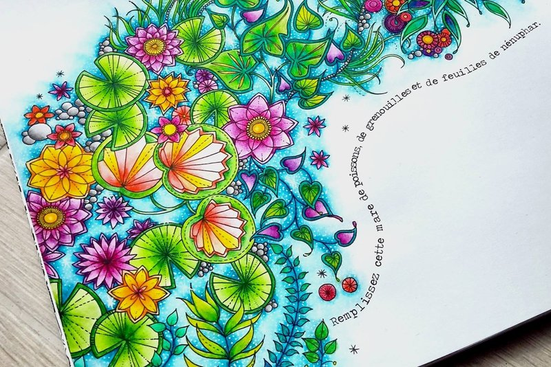 Coloriage Anti Stress Pour Adultes Et Enfants Belgrade Quefairebe