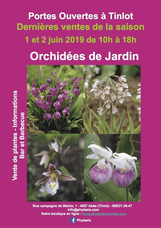 Orchidées de Jardin - Portes Ouvertes - Dernières ventes de la ...