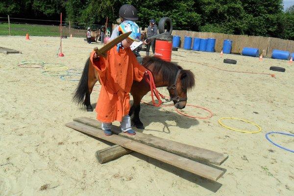 Stages,cours Formation équimotricité Psychomotricité avec poneys
