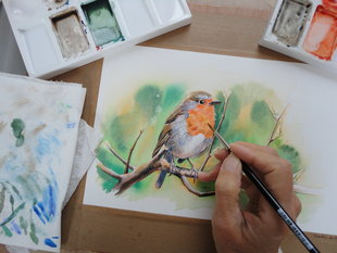Stages,cours Stage d aquarelle