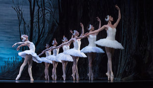 Voorstellingen Ballet Charkov/ Zwanenmeer