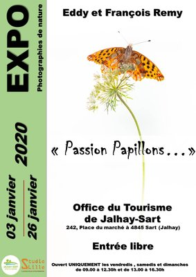 Expositions  Passion papillons  - Exposition photographies